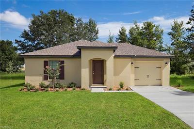 Fort Myers FL Single Family Home For Sale: $176,900