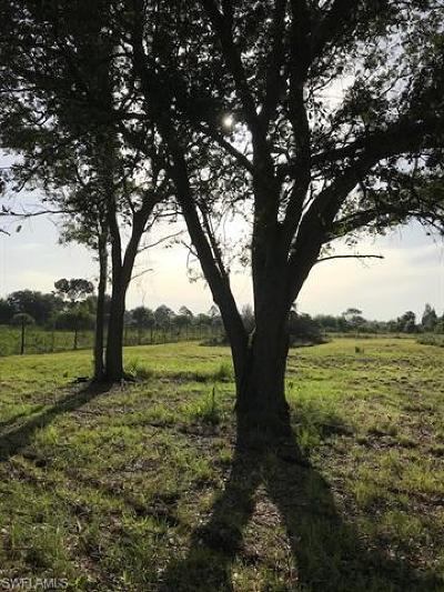 Montura, Montura Ranch, Montura Ranch Estates, Montura Ranch Sec 15, Montura Ranch Sec 34 Residential Lots & Land For Sale: 465 Estribo St N
