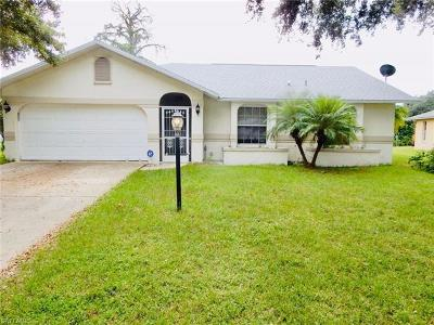 Fort Myers Single Family Home For Sale: 19280 Cypress View Dr