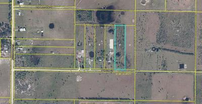 Glades County Residential Lots & Land For Sale: 1133 Carson Dr