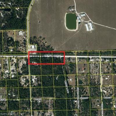 Residential Lots & Land For Sale: 1150 Arcadia Ave