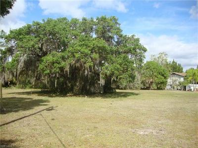 Glades County Residential Lots & Land For Sale: 12690 Canopy Ln