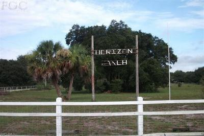 Glades County Residential Lots & Land For Sale: 1229 Palomino Dr