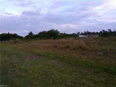Hendry County Residential Lots & Land For Sale: 7028 Brazil Cir