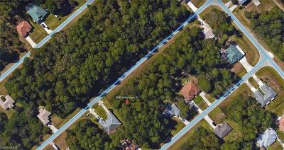 Fort Myers Residential Lots & Land For Sale: 3848 Hillandale St