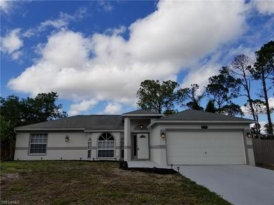 Buckingham Single Family Home For Sale: 3716 Tallman St