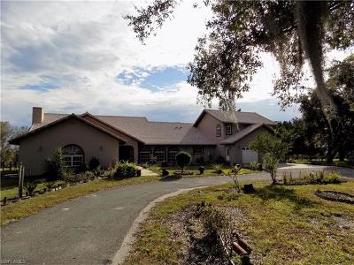 Punta Gorda Single Family Home For Sale: 32401 Tonowa Dr
