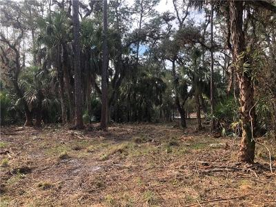 Glades County Residential Lots & Land For Sale: Tom Coker Rd