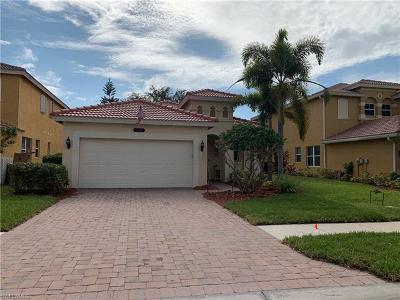 Estero Single Family Home For Sale: 10143 North Silver Palm Dr