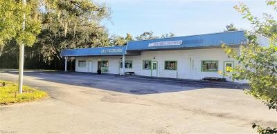 Commercial For Sale: 1816 State Road N 29