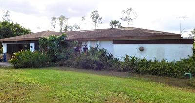 Lehigh Acres Single Family Home For Sale: 1017 Michael Ave