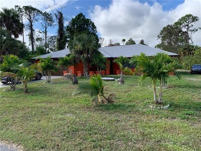 Lehigh Acres Single Family Home For Sale: 321 Greenwood Ave