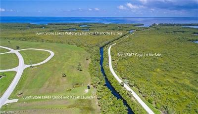 Punta Gorda FL Residential Lots & Land For Sale: $34,000