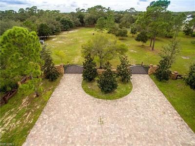 Alva Residential Lots & Land For Sale: 16990 N River Rd