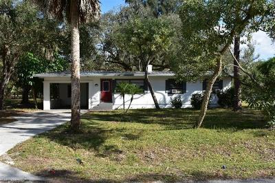 Labelle Single Family Home For Sale: 228 S Davis St