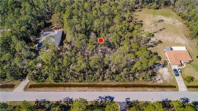 Bonita Springs Residential Lots & Land For Sale: 24376 Mountain View Dr