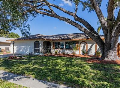 Fort Myers Single Family Home For Sale: 1455 Carmelle Dr