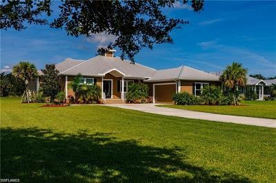 Fort Myers Single Family Home For Sale: 4260 Horse Creek Blvd
