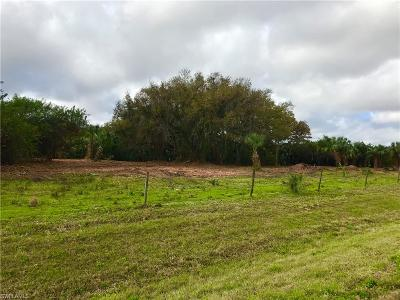Alva Residential Lots & Land For Sale: 23600 Palm Beach Blvd