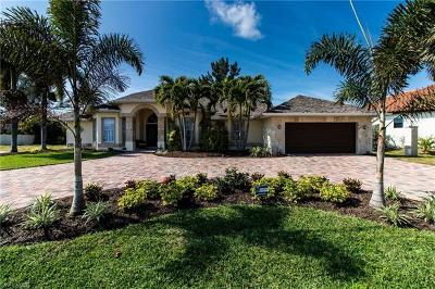 Cape Coral Single Family Home For Sale: 3924 Agualinda Blvd