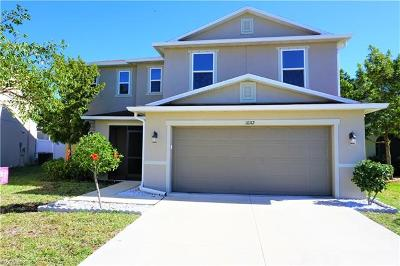 Punta Gorda Single Family Home For Sale: 10112 Cypress Branch Ct