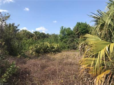 Buckingham Residential Lots & Land For Sale: 6035 Tabor Ave