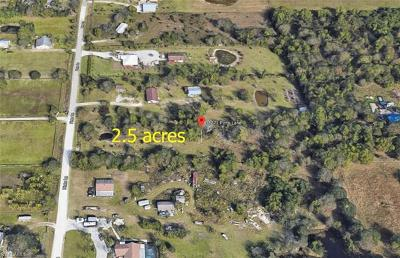 Fort Myers Residential Lots & Land For Sale: 13271 Pinto Ln