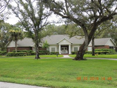 Labelle Single Family Home For Sale: 644 Turtle Ln