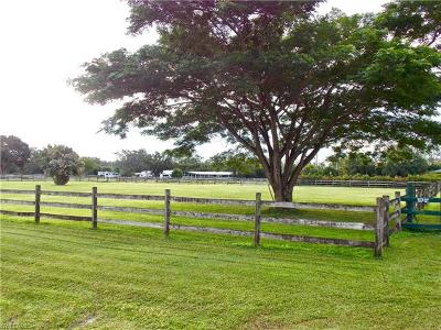 Fort Myers Residential Lots & Land For Sale: 6710 Idlewild St