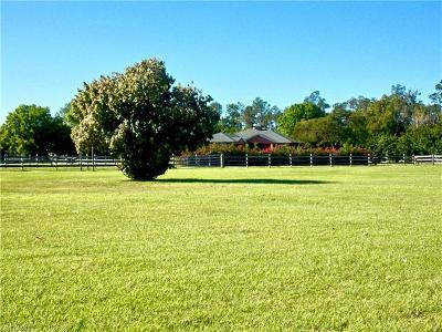 Fort Myers Single Family Home For Sale: 6650 Idlewild St