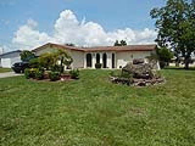 Cape Coral Single Family Home For Sale: 2911 SE 10th Pl