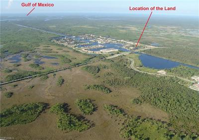 Naples Residential Lots & Land For Sale: 25000 Tamiami Trl E