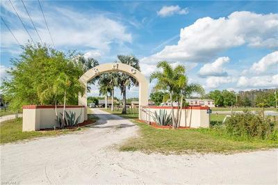 Fort Myers Mobile/Manufactured For Sale: 17201 Richard Rd