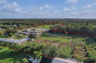 Fort Myers, Fort Myers Beach Single Family Home For Sale: 7200 Carousel Ln