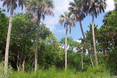 Captiva Residential Lots & Land For Sale: 161 Swallow Dr