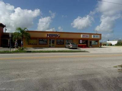 Cape Coral Commercial For Sale: 424 SE 47th Ter #C