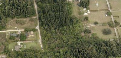 Cape Coral Commercial Lots & Land For Sale: 939, 959, 975 Ridge Rd