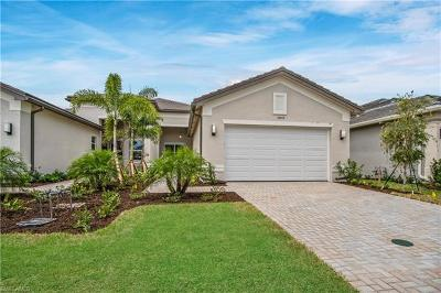 Bonita Springs Single Family Home For Sale: 28464 Burano Dr