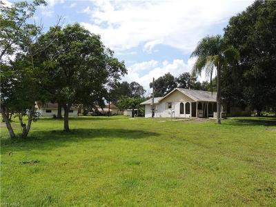 Fort Myers Single Family Home For Sale: 13261 Green Meadow Rd