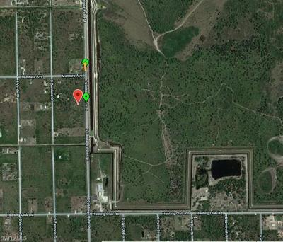 Residential Lots & Land For Sale: 330 S Cabbage Palm St
