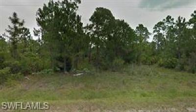 Clewiston FL Residential Lots & Land For Sale: $17,999