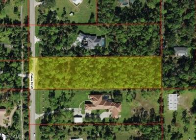 Naples Residential Lots & Land For Sale: Oakes Blvd.