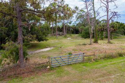 Fort Myers Residential Lots & Land For Sale: 7021 Hendry Creek Dr
