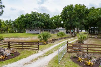 Fort Myers Single Family Home For Sale: 11820 Glen Ave