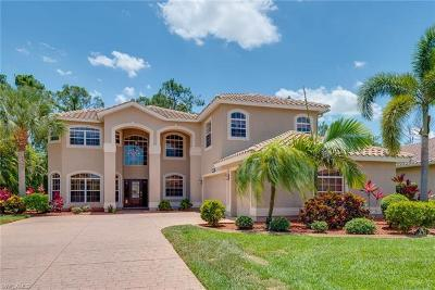 Fort Myers Single Family Home For Sale: 12446 Pebble Stone Ct