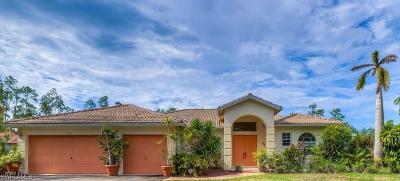 Naples Single Family Home For Sale: 3980 Golden Gate Blvd E