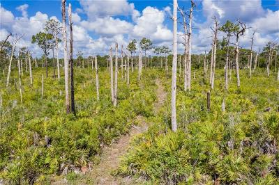 Glades County Residential Lots & Land For Sale: 435 Pine Ave