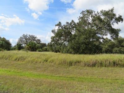 Residential Lots & Land For Sale: 11 N Hilton Cir