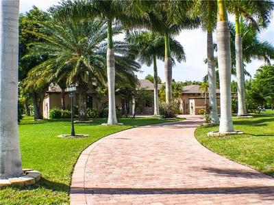 Cape Coral Single Family Home For Sale: 11957 Princess Grace Ct