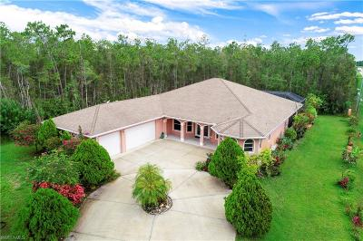 Bonita Springs Single Family Home For Sale: 10711 Strike Lane